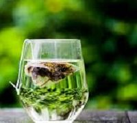 té verde en la salud